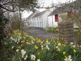 83 Buckshead Road, Downpatrick, Co. Down - Detached House / 1 Bathroom / £350,000