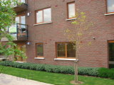 Hunters Walk, Hunterswood, Firhouse, Dublin 24, South Dublin City, Co. Dublin - Apartment For Sale / 2 Bedrooms, 1 Bathroom / €285,000