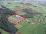 Tullig, Leap, Skibbereen, West Cork - Site For Sale / 10 Acre Site / €75,000