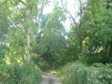 BOGHILL ROAD, Templepatrick, Co. Antrim, BT39 0HS - Site For Sale / 24 Acre Site / £250,000
