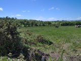 Lissarourke, Enniskeane, West Cork - Site For Sale / 0.65 Acre Site / P.O.A