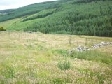 Glencullen, Glencullen, Co. Dublin - Site For Sale / 14.6 Acre Site / €85,000