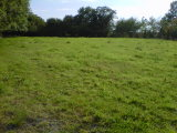Rathbawn, Tullow, Co. Carlow - Site For Sale / 0.6 Acre Site / €75,000