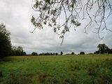 Land C. 4.5 Acres/1.8 Ha., Garristown, North Co. Dublin - Site For Sale / 4.5 Acre Site / €55,000