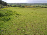 Roughgrove, Bandon, West Cork - Site For Sale / 5.5 Acre Site / €130,000