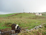 Woodview, Ennistymon, Co. Clare - Site For Sale / 0.75 Acre Site / €85,000