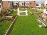 29 Adamstown Way, Lucan, West Co. Dublin - Duplex For Sale / 3 Bedrooms, 3 Bathrooms / €205,000