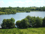 Killywilly, Ballyconnell, Co. Cavan - Site For Sale / 2 Acre Site / €120,000