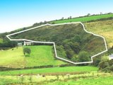 Clodagh, Drimoleague, West Cork, Co. Cork - Site For Sale / 3 Acre Site / €80,000
