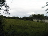 New Haggard, Lusk, North Co. Dublin - Site For Sale / 5.8 Acre Site / €1,200,000
