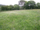 Galbolie 661, Galbolie, Co. Cavan - Site For Sale / 6.5 Acre Site / P.O.A