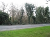 Old Belfast Road, Bangor, Co. Down, BT19 7RU - Site For Sale / null / P.O.A
