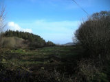 Drombrow, West Cork, Bantry, West Cork, Co. Cork - Site For Sale / null / P.O.A