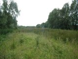 Site 300M South Of 17 , Lisheegan Lane, Ballymoney, Co. Antrim, BT53 7JZ - Site For Sale / 0.33 Acre Site / £79,950